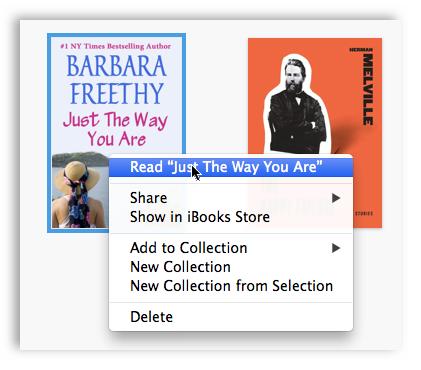ibooks-for-mac-options