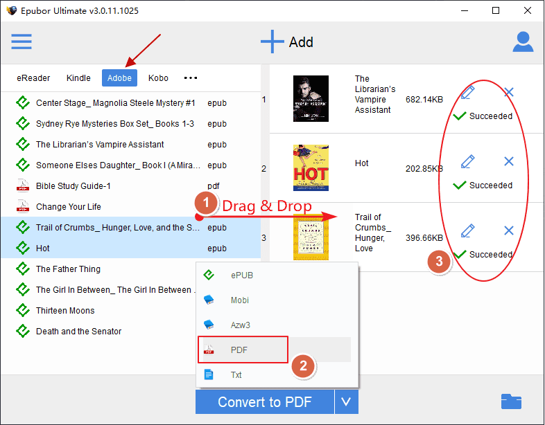 convert Google Play Books to PDF
