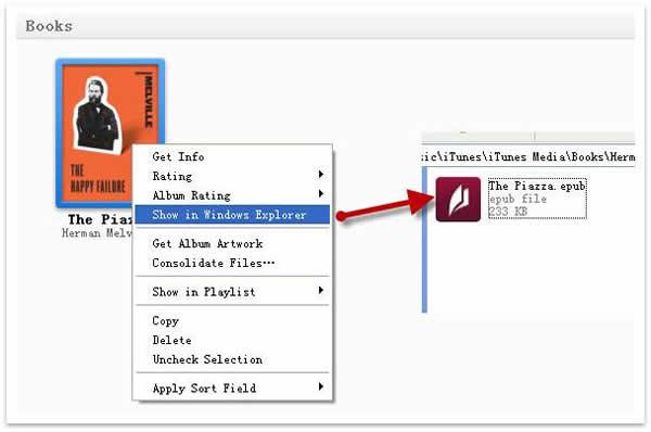 iBooks DRM Removal